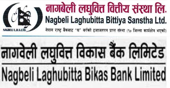Nagbeli Laghubitta Improves Net Profit