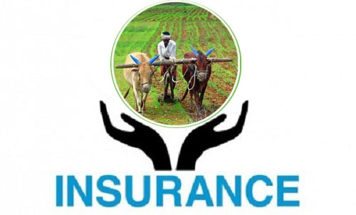 कृषि तथा पशुपन्छी बीमामा सरकारकाे करिब डेढ अर्बको अनुदान